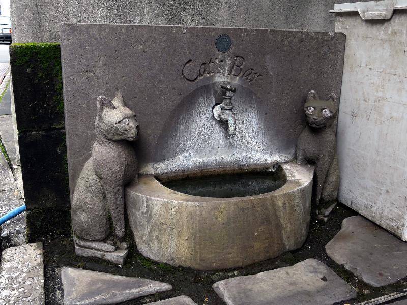 20150825 猫の水飲み場 大分県大分市府内町2-1-20「グラムビル」(2015_0825_112946)