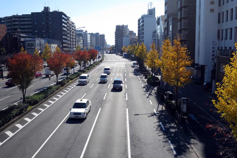 20151208_04 堀川通、堀川高校前歩道橋(2015_1208_122457)