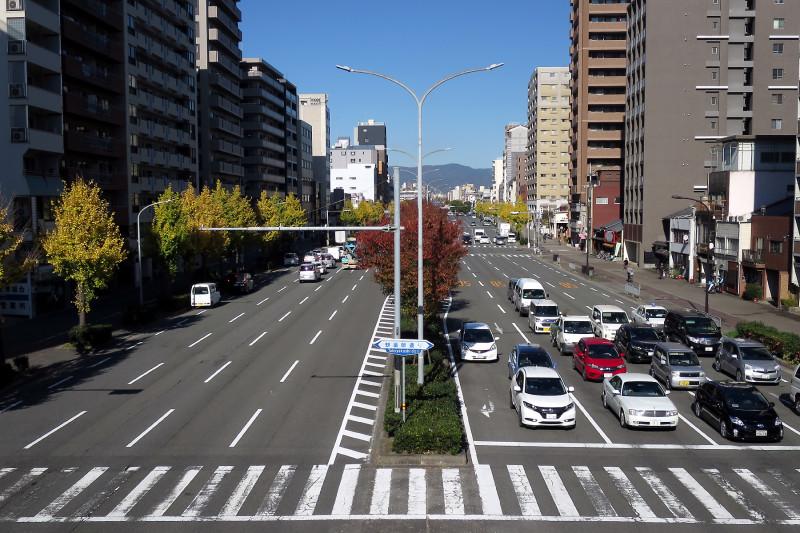 20151208_05 堀川通、堀川高校前歩道橋(2015_1208_122541)