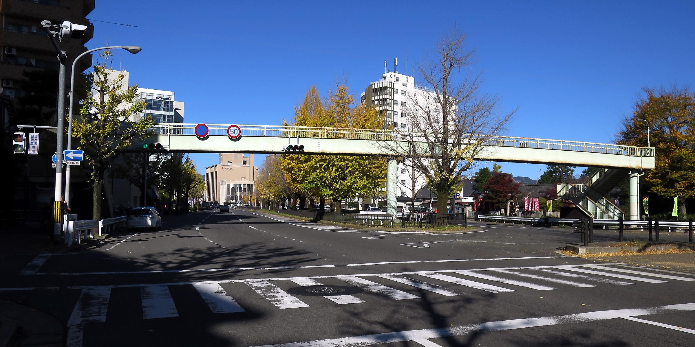 20151208_09 堀川通、成逸歩道橋(2015_1208_133524)