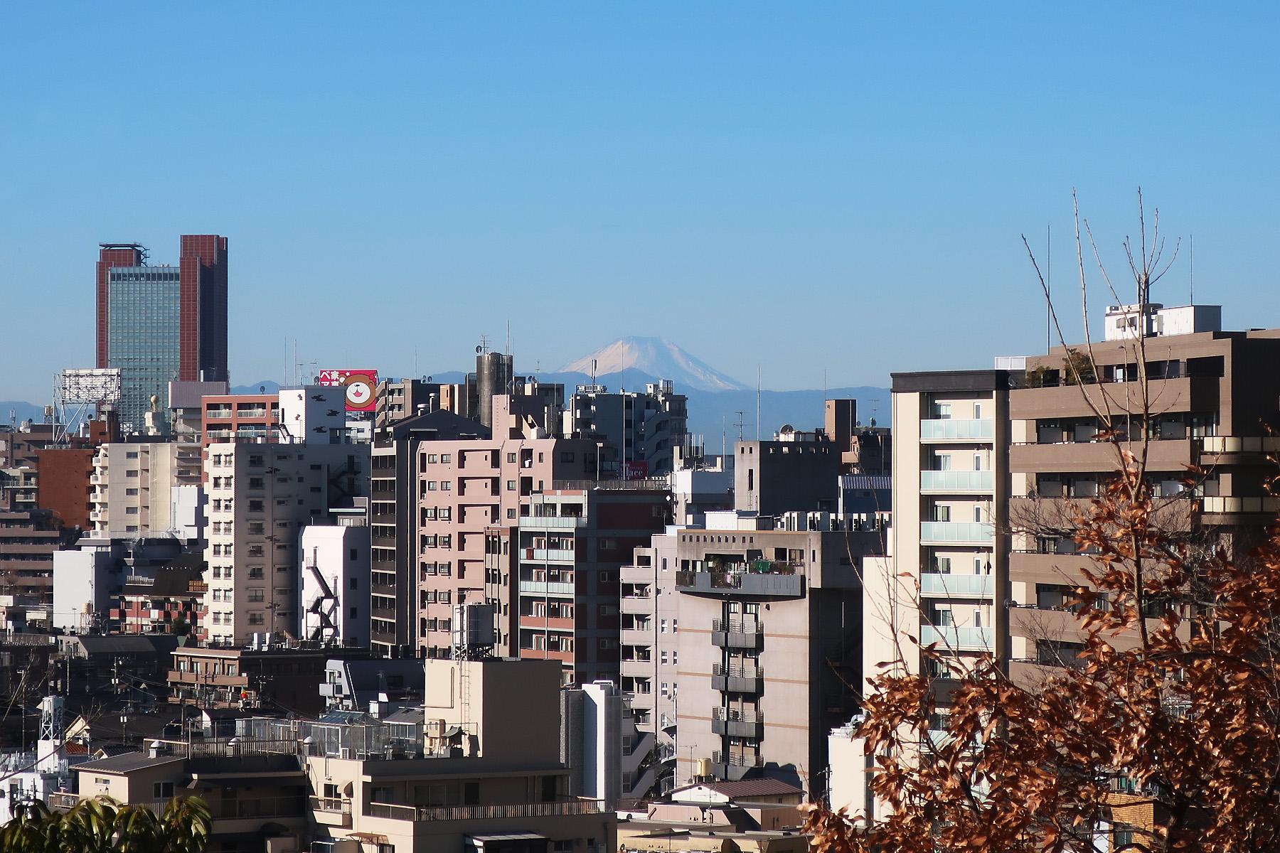 015_3 目黒天空庭園より富士山(2018_0106_094220)